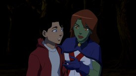 Young Justice - Misplaced